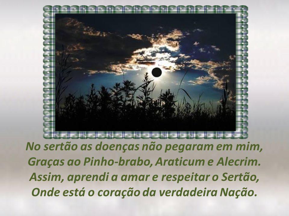 No sertão as doenças não pegaram em mim, Graças ao Pinho-brabo, Araticum e Alecrim.