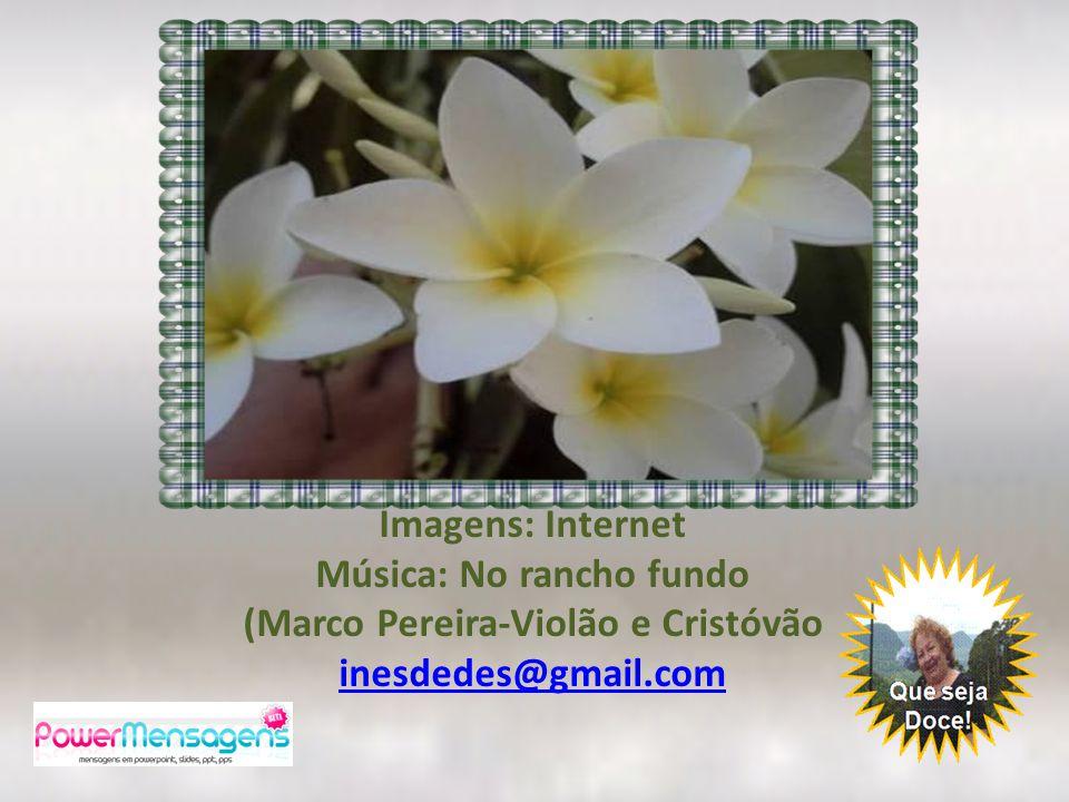 Imagens: Internet Música: No rancho fundo (Marco Pereira-Violão e Cristóvão inesdedes@gmail.com