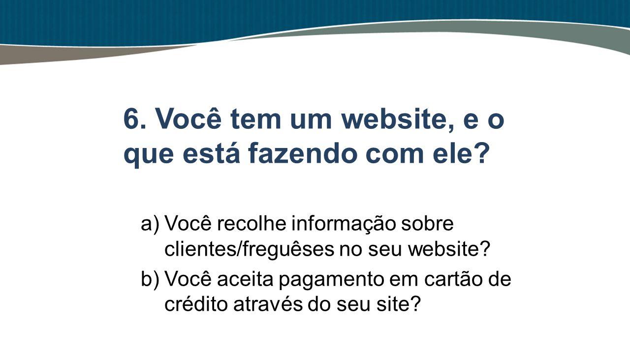 a)Você recolhe informação sobre clientes/freguêses no seu website? b)Você aceita pagamento em cartão de crédito através do seu site? 6. Você tem um we