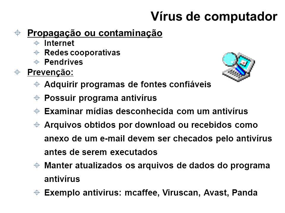 Vírus de computador Propagação ou contaminação Internet Redes cooporativas Pendrives Prevenção: Adquirir programas de fontes confiáveis Possuir progra