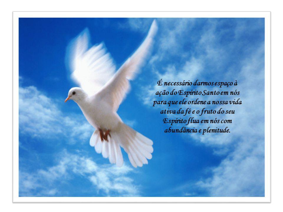 Feliz a alma que é transformada assim pelo Amor divino! Já não pode senão amar, amar com um amor profundo e absolutamente sobrenatural, que a leva a d
