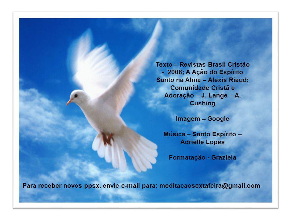 É necessário darmos espaço à ação do Espírito Santo em nós para que ele ordene a nossa vida ativa da fé e o fruto do seu Espírito flua em nós com abun