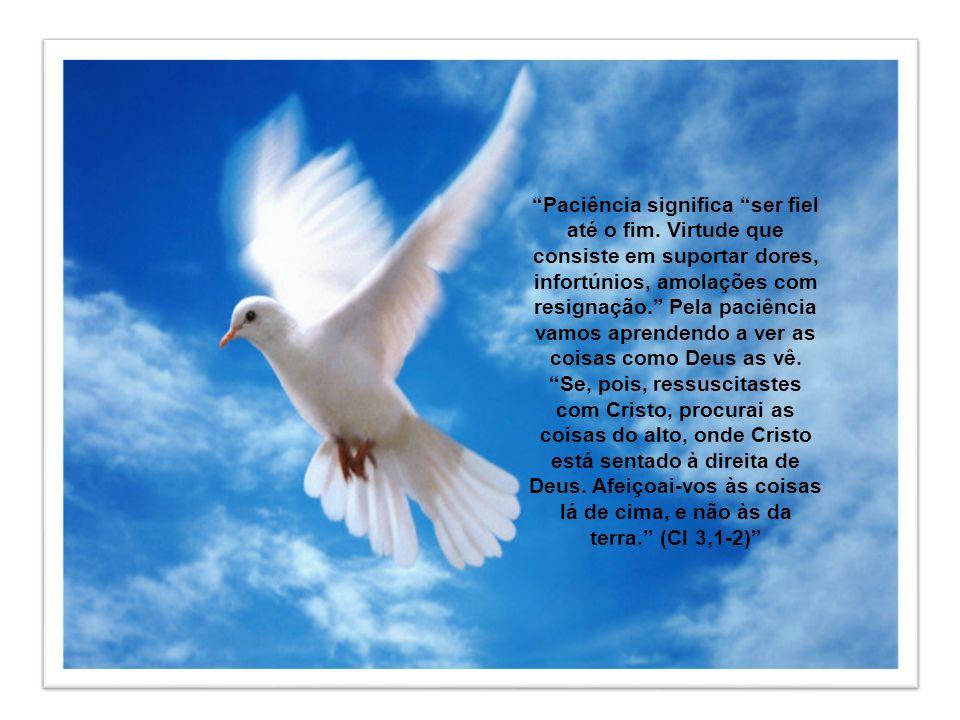 A Paciência é uma disposição da alma que nos permite suportar com serenidade, por amor a Deus e em união com o Senhor, os sofrimentos físicos e morais