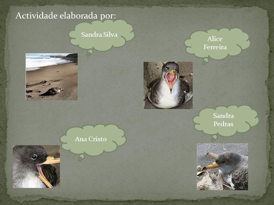 Actividade elaborada por: Alice Ferreira Sandra Pedras Ana Cristo Sandra Silva
