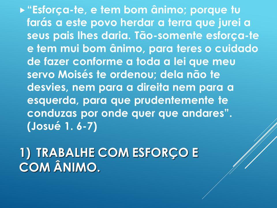 1) TRABALHE COM ESFORÇO E COM ÂNIMO.