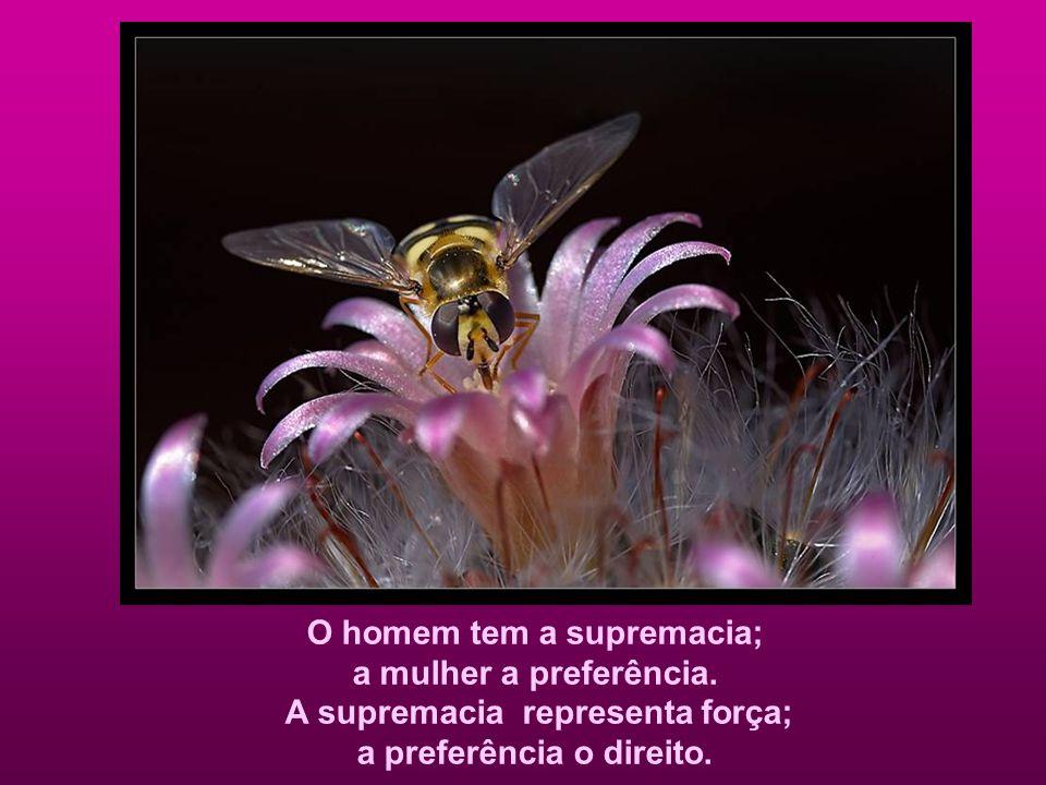 A aspiração do homem é a suprema glória; a aspiração da mulher a virtude extrema. A glória traduz grandeza; a virtude traduz divindade.