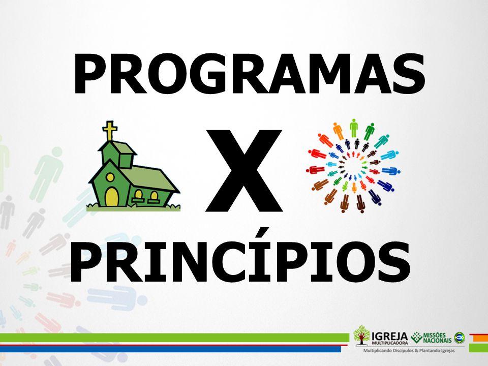 PROGRAMAS PRINCÍPIOS X