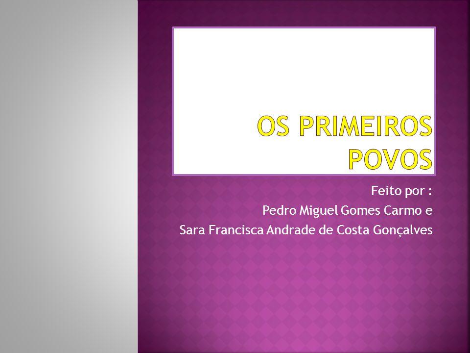 Feito por : Pedro Miguel Gomes Carmo e Sara Francisca Andrade de Costa Gonçalves