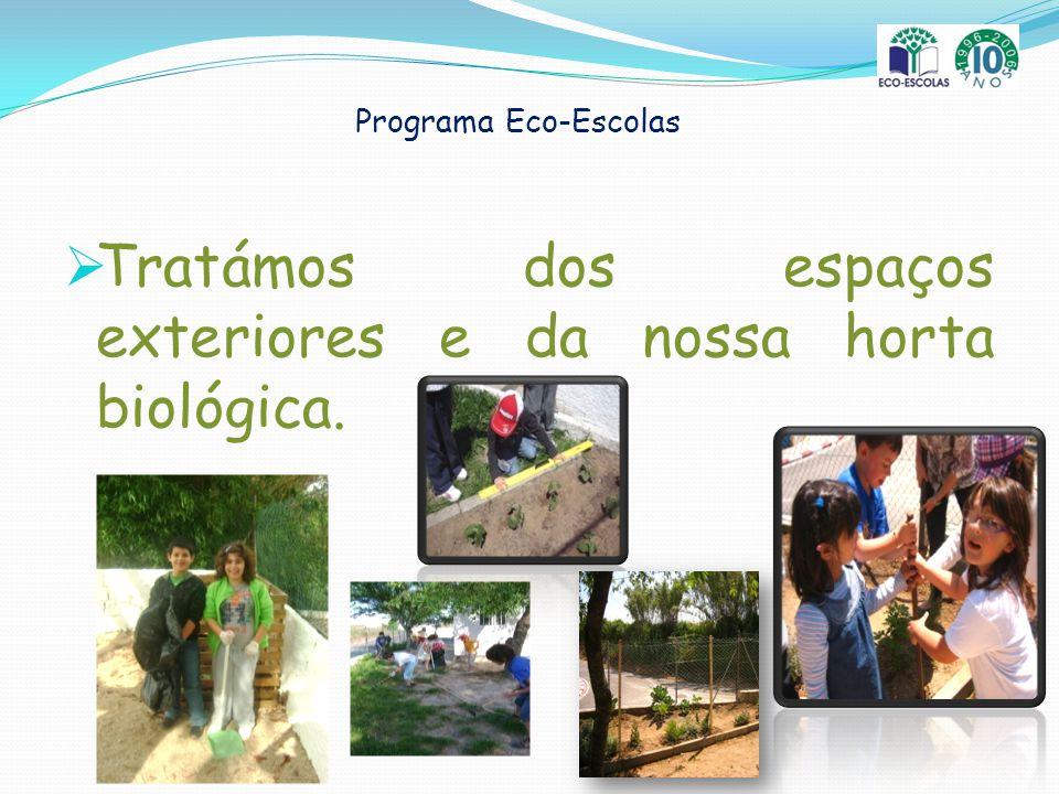 Programa Eco-Escolas Tratámos dos espaços exteriores e da nossa horta biológica.