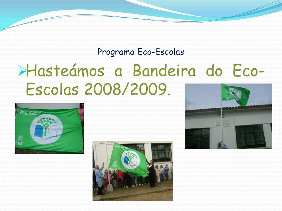 Programa Eco-Escolas Hasteámos a Bandeira do Eco- Escolas 2008/2009.