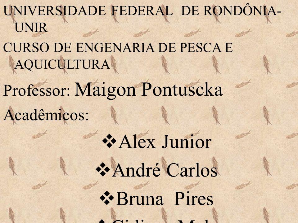 UNIVERSIDADE FEDERAL DE RONDÔNIA- UNIR CURSO DE ENGENARIA DE PESCA E AQUICULTURA Professor: Maigon Pontuscka Acadêmicos: Alex Junior André Carlos Brun