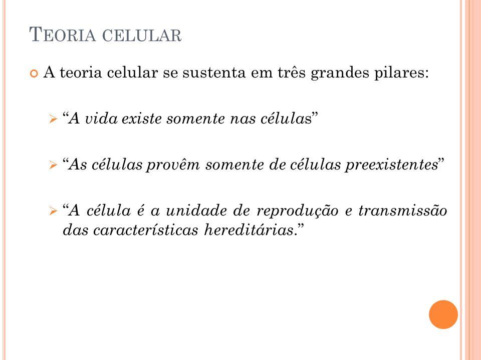T EORIA CELULAR A teoria celular se sustenta em três grandes pilares: A vida existe somente nas célula s As células provêm somente de células preexist