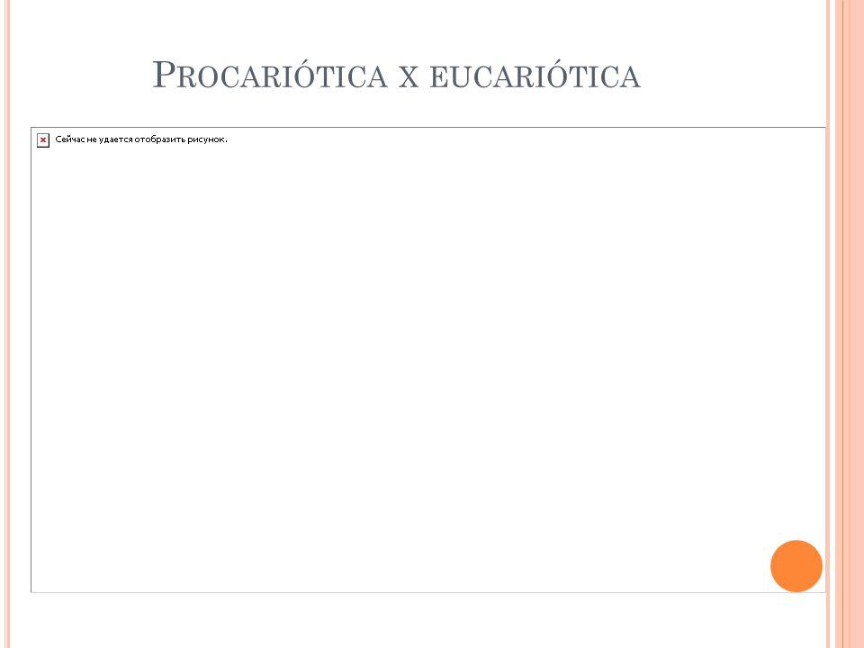 P ROCARIÓTICA X EUCARIÓTICA