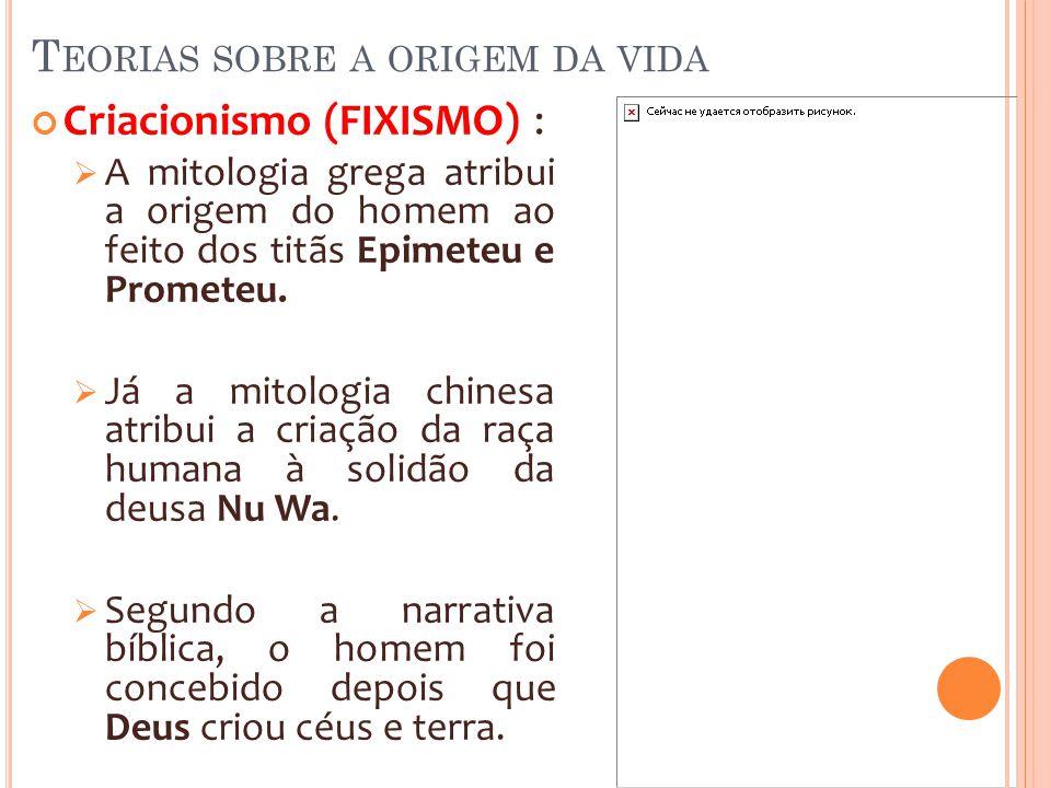 T EORIAS SOBRE A ORIGEM DA VIDA Criacionismo (FIXISMO) : A mitologia grega atribui a origem do homem ao feito dos titãs Epimeteu e Prometeu. Já a mito