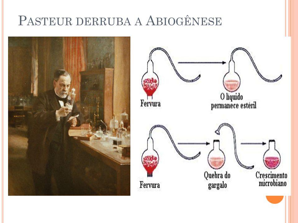 P ASTEUR DERRUBA A A BIOGÊNESE