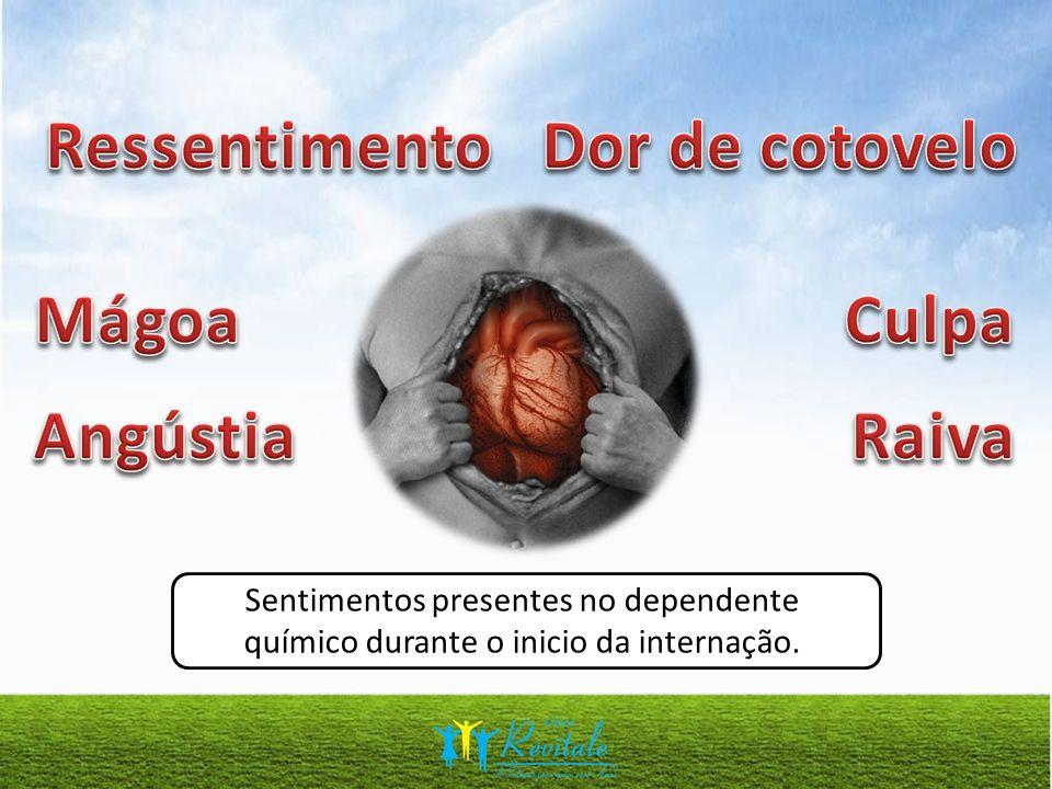 Sentimentos presentes no dependente químico durante o inicio da internação.