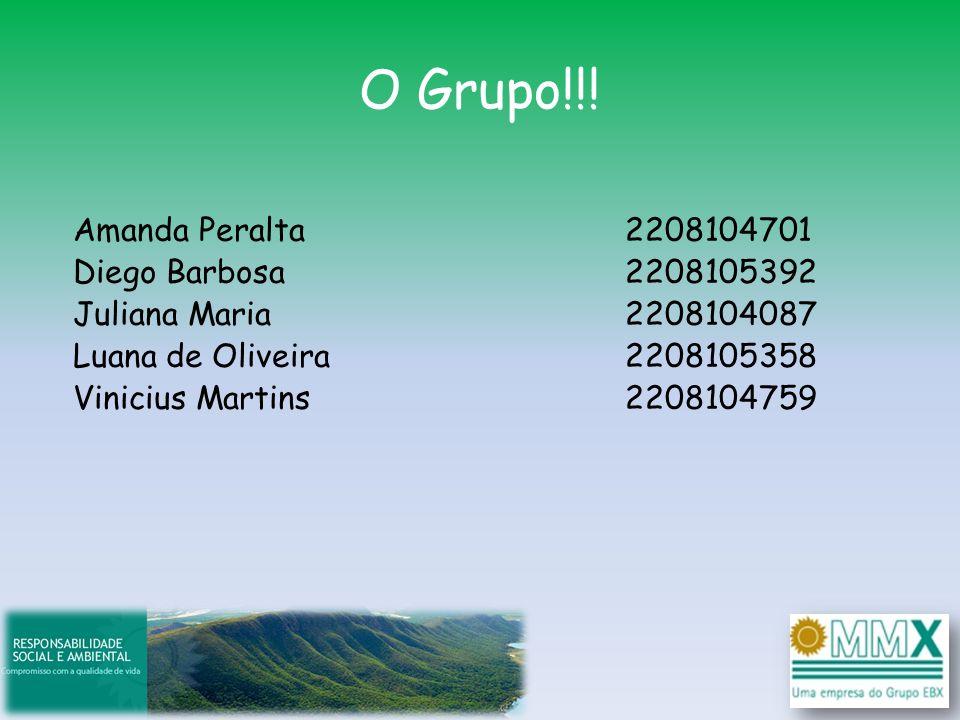 O Grupo!!! Amanda Peralta Diego Barbosa Juliana Maria Luana de Oliveira Vinicius Martins 2208104701 2208105392 2208104087 2208105358 2208104759