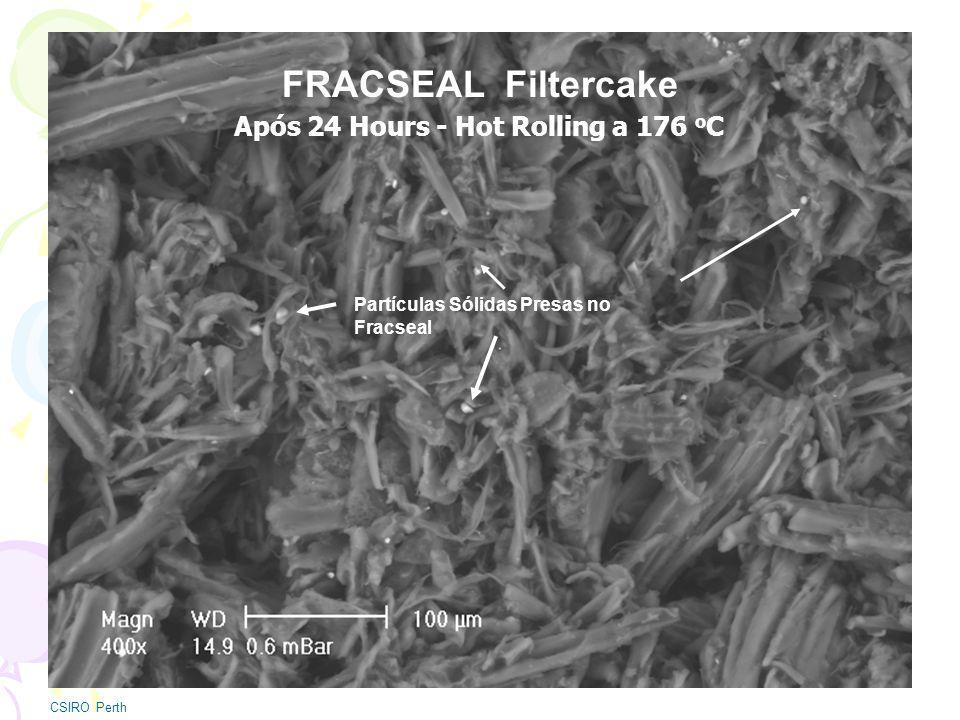 FRACSEAL Filtercake CSIRO Perth Partículas Sólidas Presas no Fracseal Após 24 Hours - Hot Rolling a 176 o C