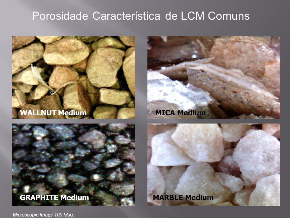 WALLNUT Medium GRAPHITE MediumMARBLE Medium MICA Medium Porosidade Característica de LCM Comuns Microscopic Image 100 Mag.