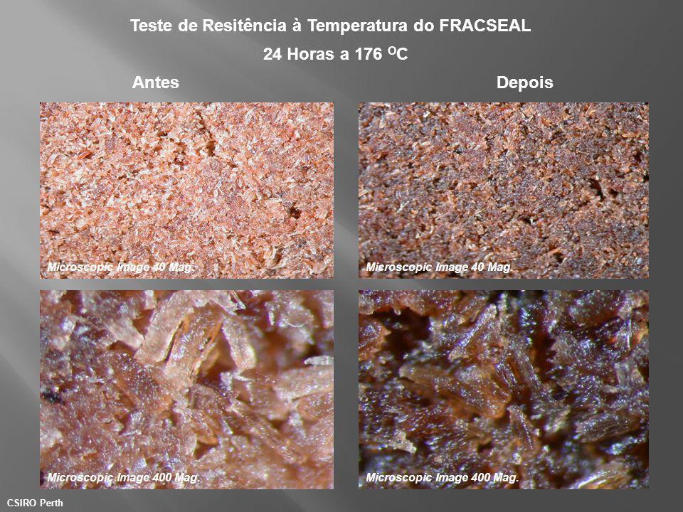 AntesDepois Teste de Resitência à Temperatura do FRACSEAL Microscopic Image 40 Mag. 24 Horas a 176 O C CSIRO Perth Microscopic Image 400 Mag. Microsco