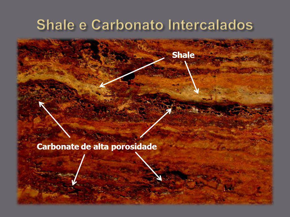 Carbonate de alta porosidade Shale