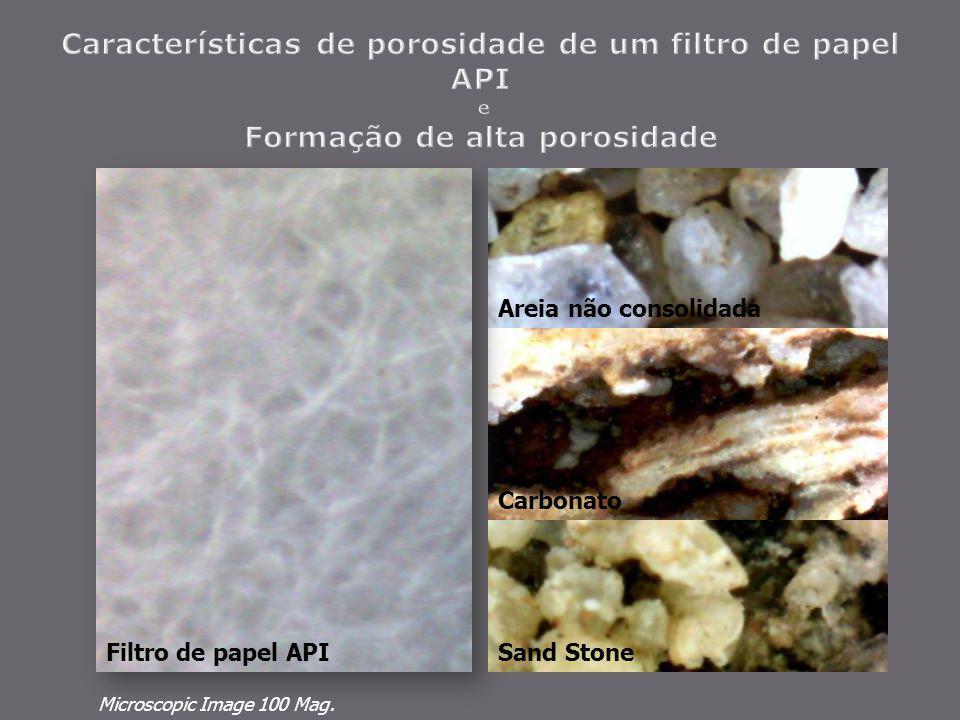 Carbonato Areia não consolidada Filtro de papel API Microscopic Image 100 Mag. Sand Stone