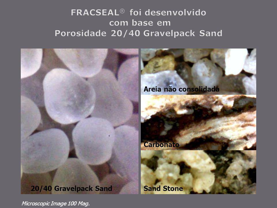 Carbonato Areia não consolidada Microscopic Image 100 Mag. Sand Stone20/40 Gravelpack Sand
