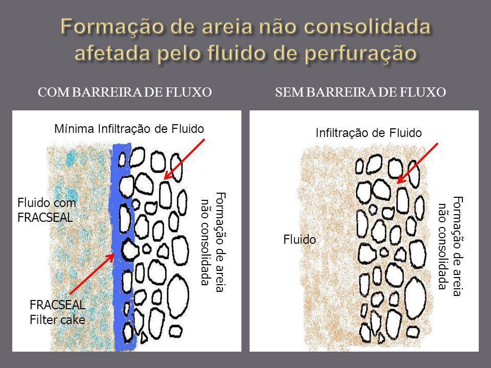 COM BARREIRA DE FLUXO SEM BARREIRA DE FLUXO Infiltração de Fluido Fluido Mínima Infiltração de Fluido Fluido com FRACSEAL Formação de areia não consol