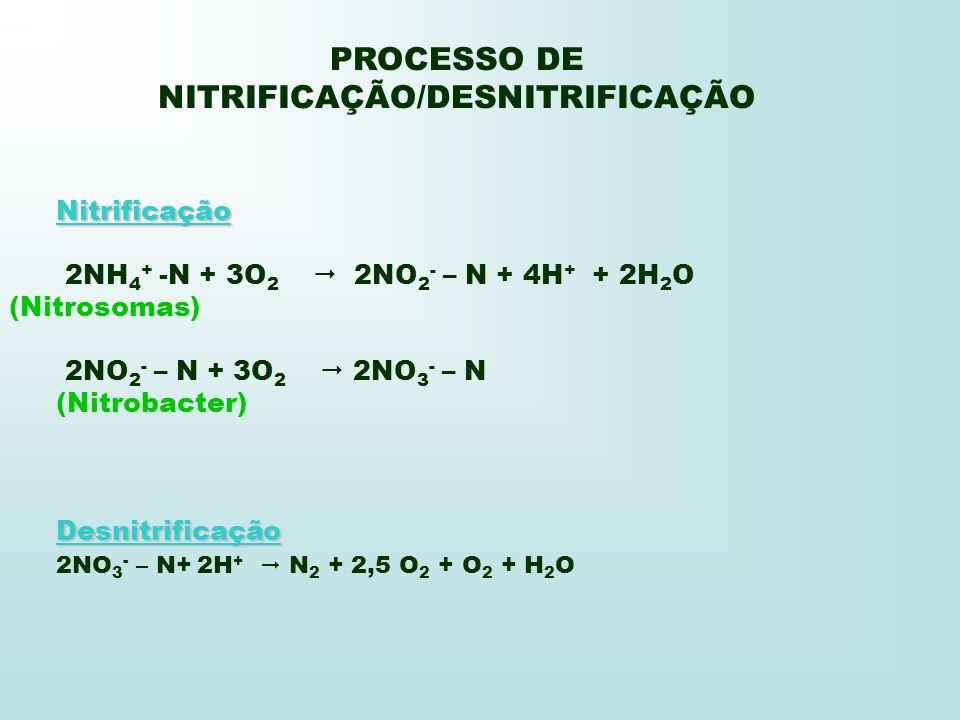 PROCESSO DE NITRIFICAÇÃO/DESNITRIFICAÇÃO Nitrificação 2NH 4 + -N + 3O 2 2NO 2 - – N + 4H + + 2H 2 O (Nitrosomas) 2NO 2 - – N + 3O 2 2NO 3 - – N (Nitro