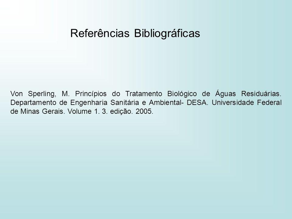 Referências Bibliográficas Von Sperling, M. Princípios do Tratamento Biológico de Águas Residuárias. Departamento de Engenharia Sanitária e Ambiental-