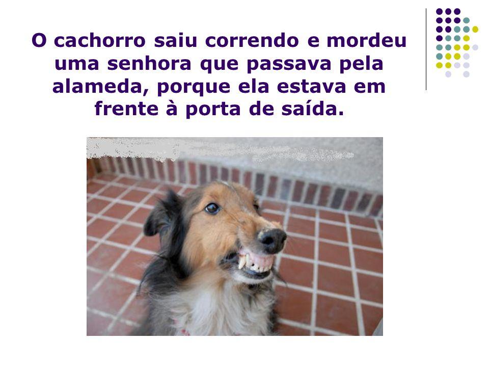 O cachorro saiu correndo e mordeu uma senhora que passava pela alameda, porque ela estava em frente à porta de saída.