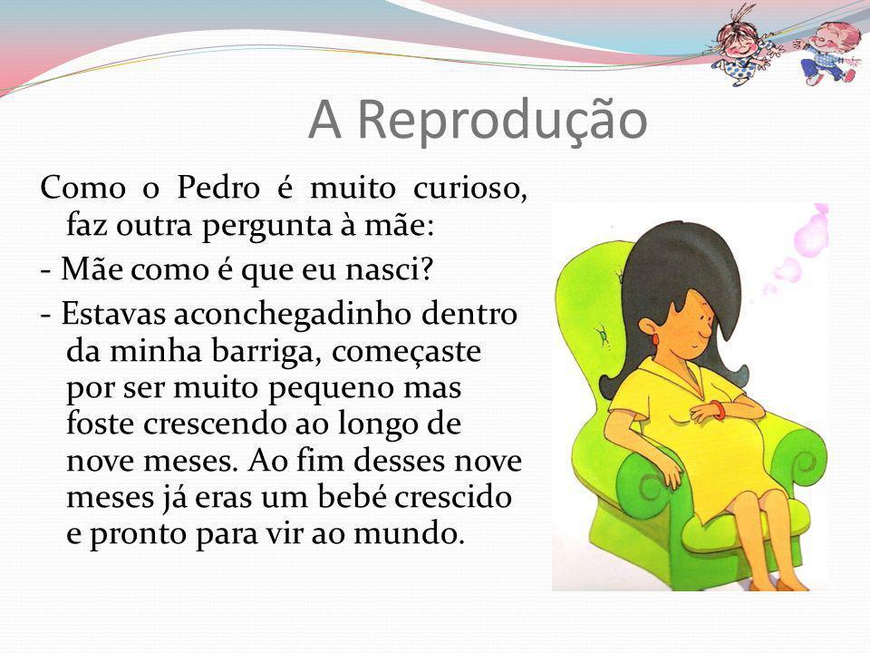 Aparelho reprodutor feminino O aparelho reprodutor feminino é constituído por: Ovários Útero Vagina
