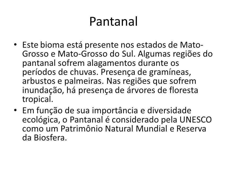 Pantanal Este bioma está presente nos estados de Mato- Grosso e Mato-Grosso do Sul. Algumas regiões do pantanal sofrem alagamentos durante os períodos
