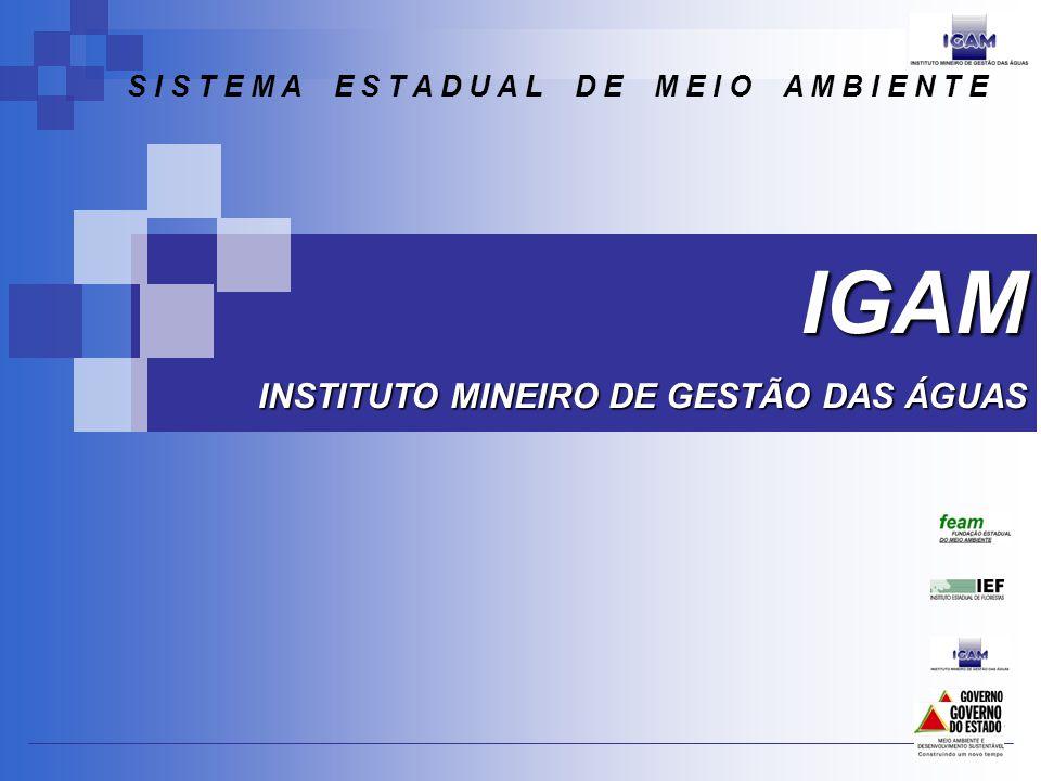 Daniela Caldeira Procuradoria Outubro de 2009 A DN CERH n° 30/09 e as modificações na DN CERH n° 04/02