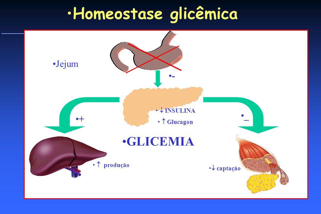 O QUE ACONTECE QUANDO COMEMOS produção _ + INSULINA Glucagon - Homeostase glicêmica Jejum captação GLICEMIA