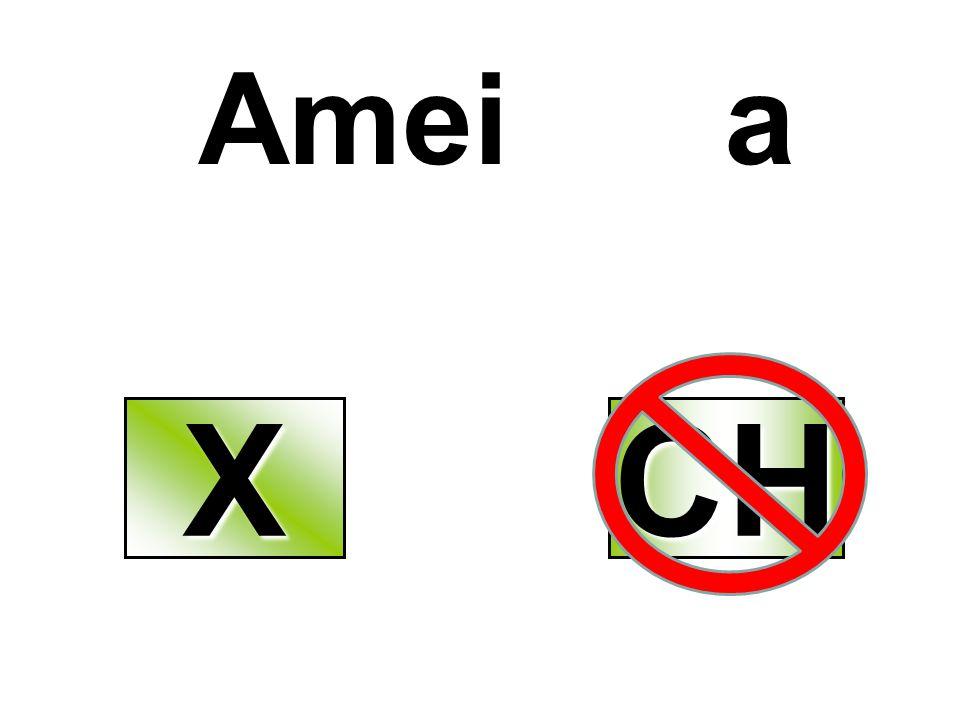 Amei a XXXX CH