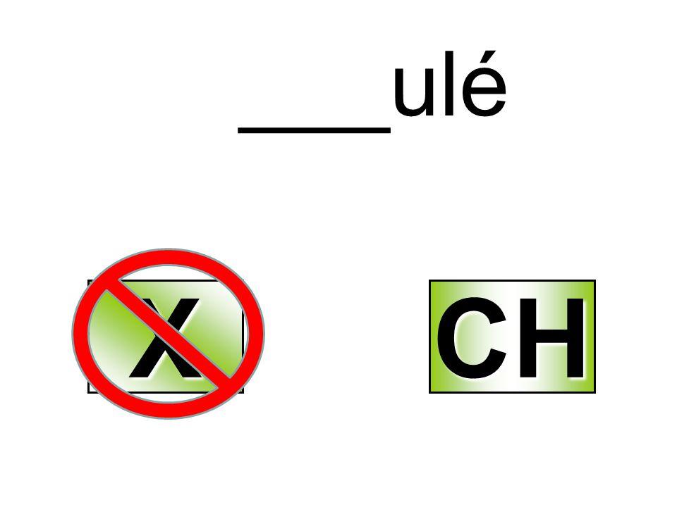 ___ulé XXXX CH