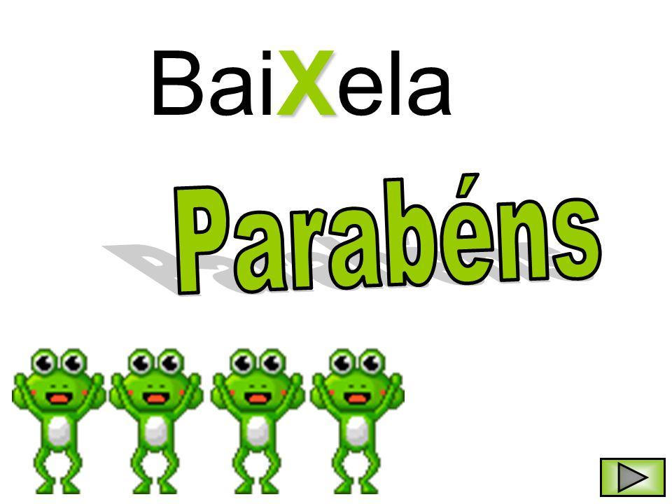 X BaiXela