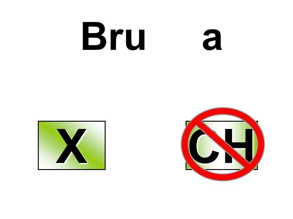 Bru a XXXX CH