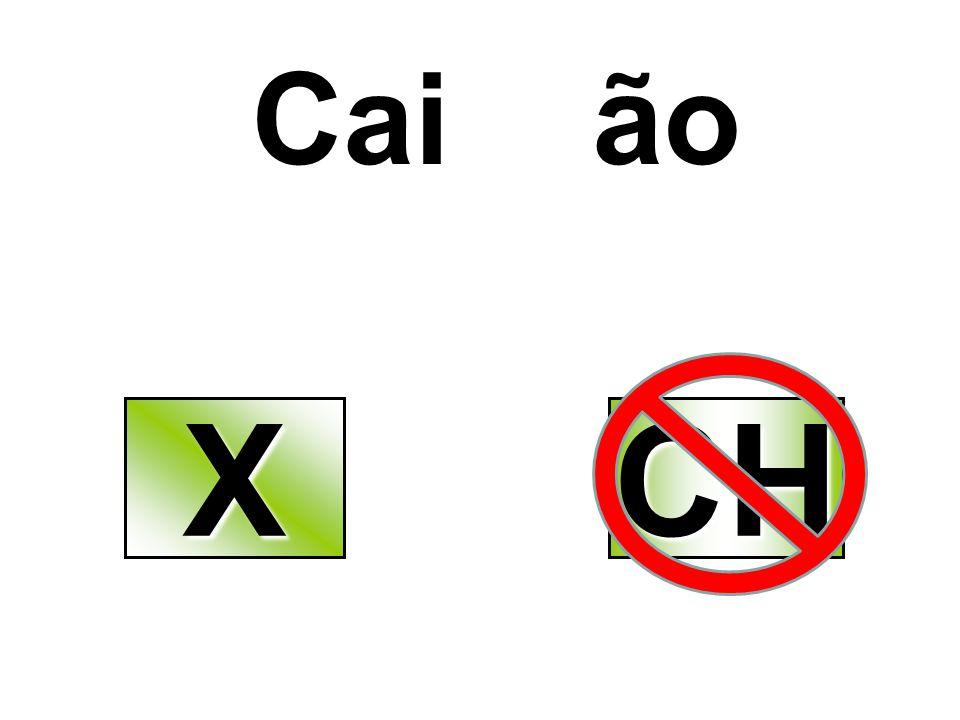 Cai ão XXXX CH