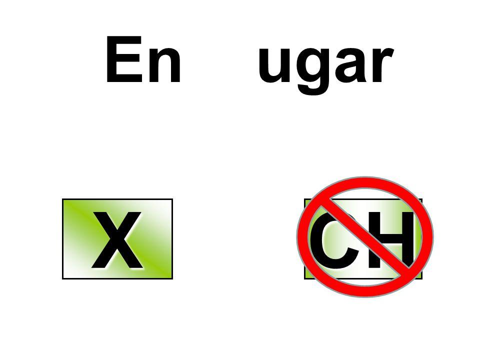 En ugar XXXX CH