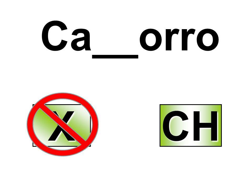 Ca__orro XXXX CH