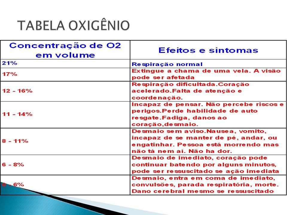 INDÚSTRIA DE PAPEL E CELULOSE INDÚSTRIA GRÁFICA INDÚSTRIA ALIMENTÍCIA INDÚSTRIA DA BORRACHA,DO COURO E TÊXTIL INDÚSTRIA NAVAL E OPERAÇÕES MARÍTIMAS INDÚSTRIAS QUÍMICAS E PETROQUÍMICAS