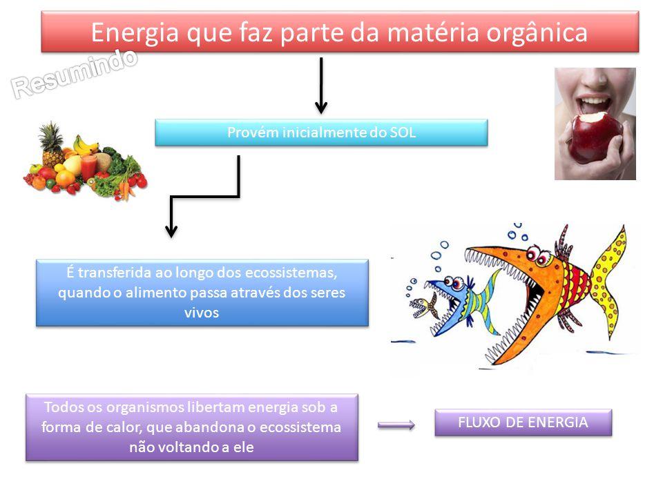 Energia que faz parte da matéria orgânica Provém inicialmente do SOL É transferida ao longo dos ecossistemas, quando o alimento passa através dos sere