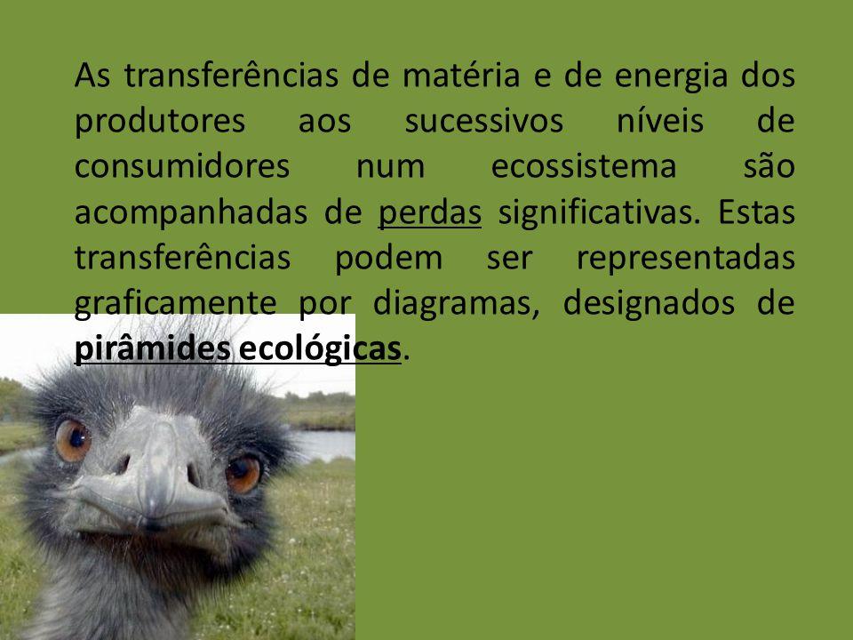 As transferências de matéria e de energia dos produtores aos sucessivos níveis de consumidores num ecossistema são acompanhadas de perdas significativ