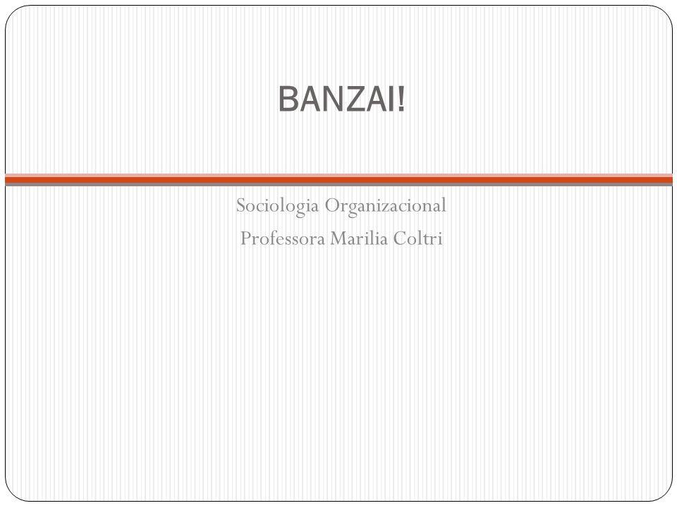 BANZAI! Sociologia Organizacional Professora Marilia Coltri