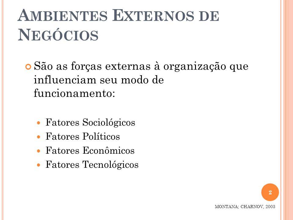 A MBIENTES E XTERNOS DE N EGÓCIOS São as forças externas à organização que influenciam seu modo de funcionamento: Fatores Sociológicos Fatores Polític