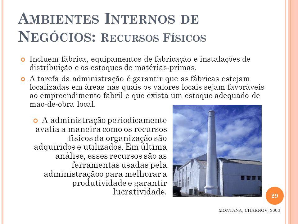 A MBIENTES I NTERNOS DE N EGÓCIOS : R ECURSOS F ÍSICOS Incluem fábrica, equipamentos de fabricação e instalações de distribuição e os estoques de maté