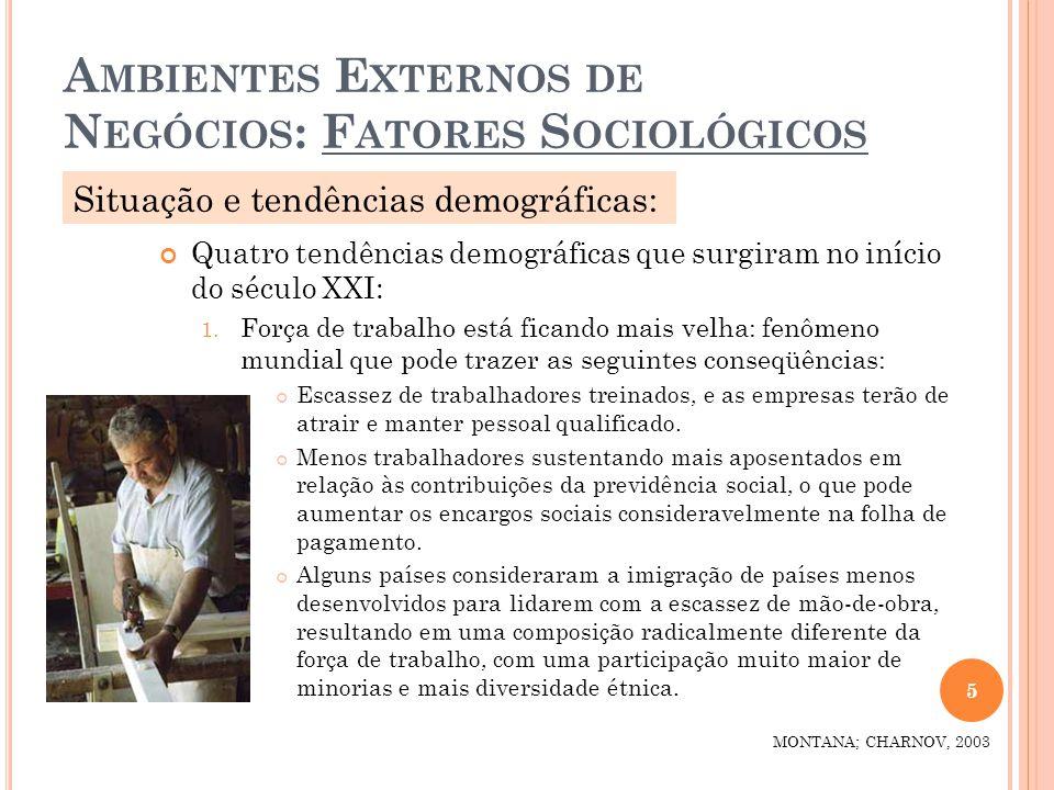 A MBIENTES E XTERNOS DE N EGÓCIOS : F ATORES S OCIOLÓGICOS Quatro tendências demográficas que surgiram no início do século XXI: 1. Força de trabalho e