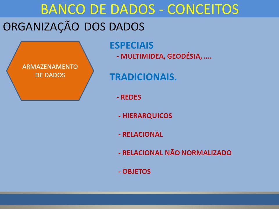 ORGANIZAÇÃO DOS DADOS BANCO DE DADOS - CONCEITOS ARMAZENAMENTO DE DADOS ESPECIAIS - MULTIMIDEA, GEODÉSIA,....